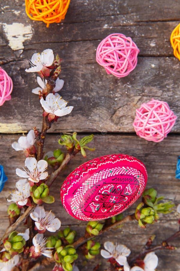 Joyeuses Pâques avec des oeufs et des fleurs de ressort photographie stock libre de droits