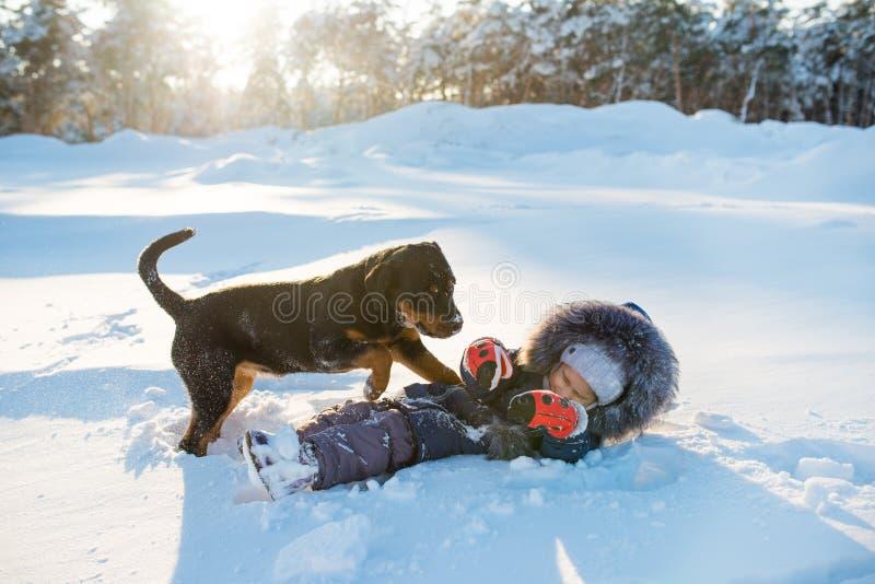 Joyeux chien noir jouant joyeusement photos stock