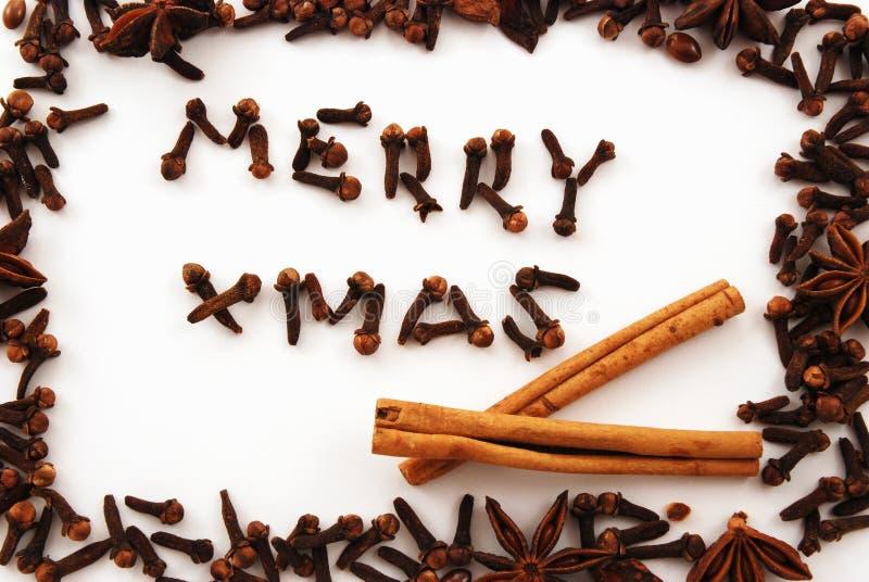 Joyeux Noël d'épice images libres de droits