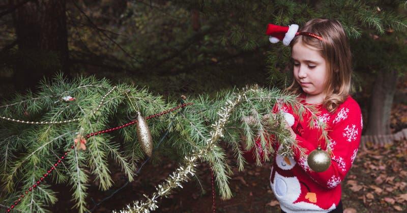 Joyeux Noël et bonnes fêtes E photographie stock libre de droits