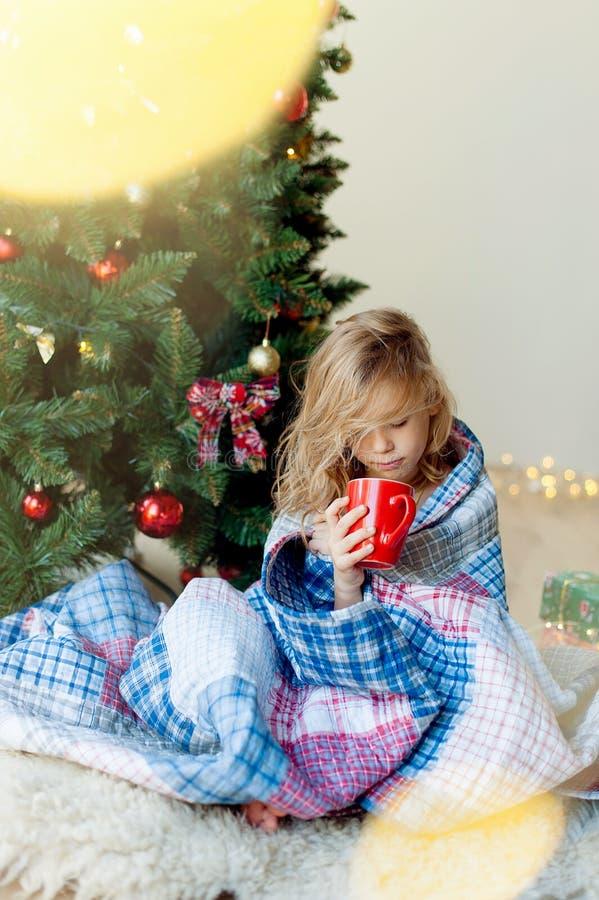 Joyeux Noël et joies fêtes !Le matin de Noël image libre de droits