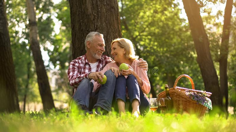 Joyful healthy old couple relaxing on grass, holding apples and hugging, picnic stock photography