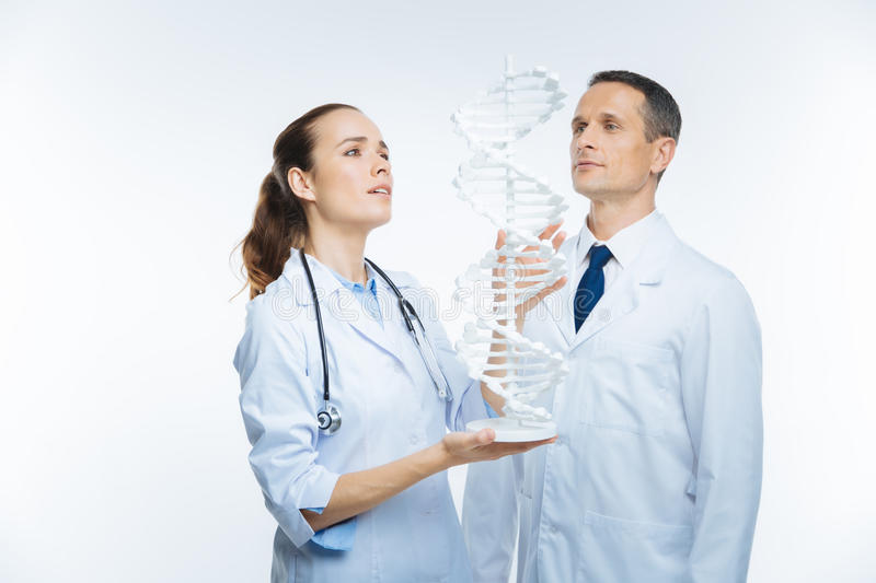 Joyful medical colleagues looking at plastic dna model together stock photos