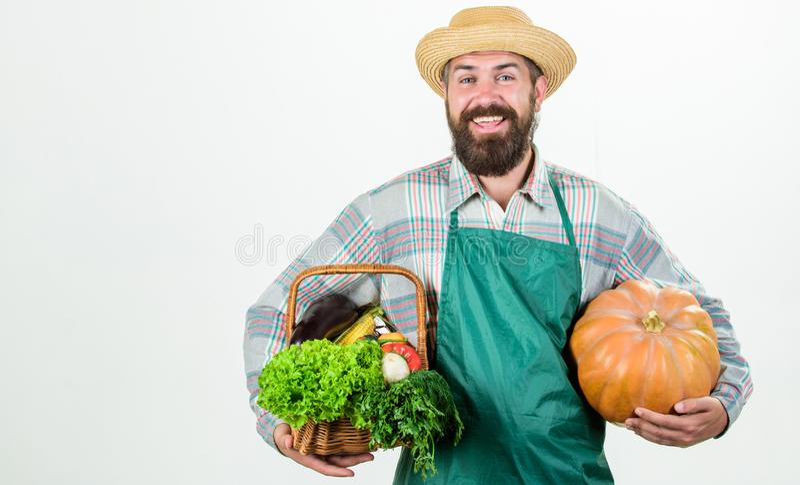 Joyful mood. bearded mature farmer. seasonal vitamin food. Useful fruit and vegetable. organic and natural food. happy. Halloween. man chef with rich autumn royalty free stock images