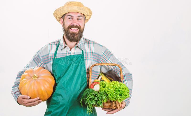 Joyful mood. bearded mature farmer. seasonal vitamin food. Useful fruit and vegetable. organic and natural food. happy. Halloween. man chef with rich autumn royalty free stock photo