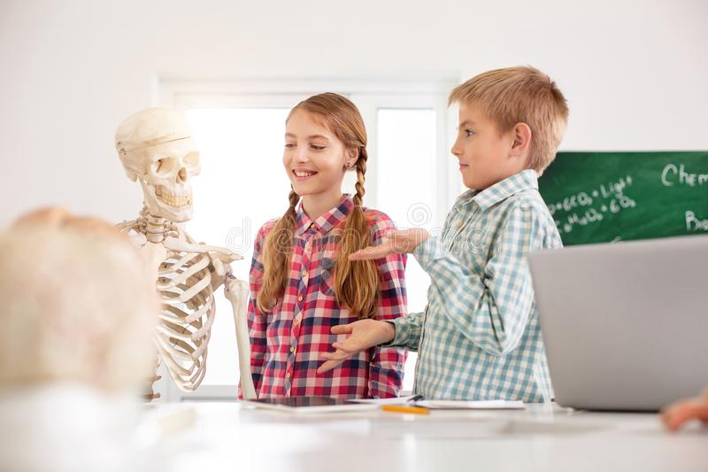 Joyful positive children talking to each other. Pleasant interaction. Joyful positive children talking to each other while looking at the skeleton royalty free stock photography