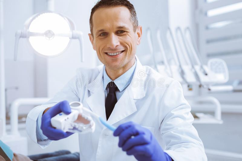 Joyful stomatologist being at workplace. Great advice. Positive delighted dentist wearing rubber gloves while demonstrating artificial teeth stock photos
