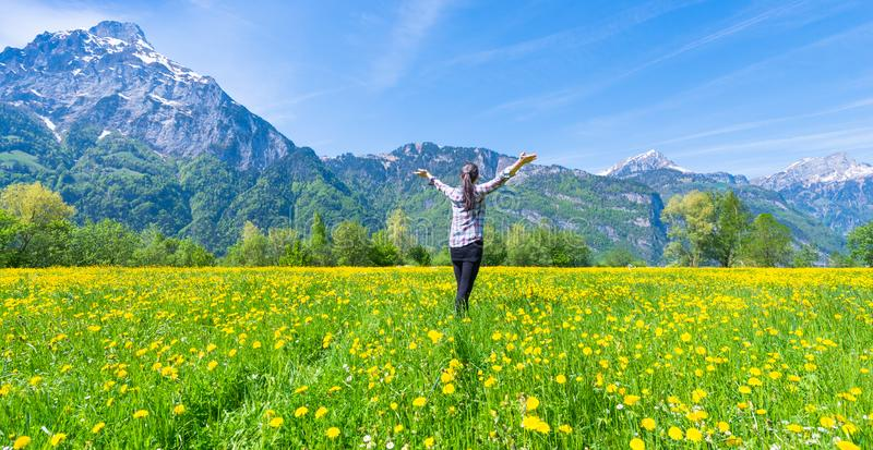 Joyful Summer. Woman with open hands on the field of flowering dandelions. Summer landscape against the background of mountains attractive beautiful beauty body stock photography