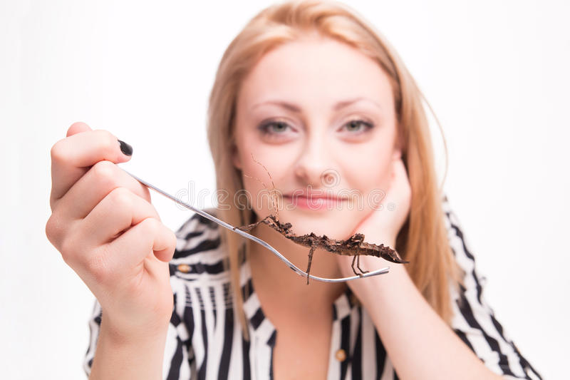 Joyful woman eating insects with a fork in a restaurant royalty free stock images