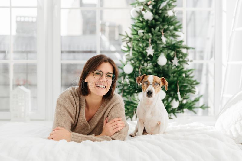Joyful woman with short dark hair wears spectacles and round glasses, funny dog in spectacles poses near host, lie on bed, have royalty free stock photos