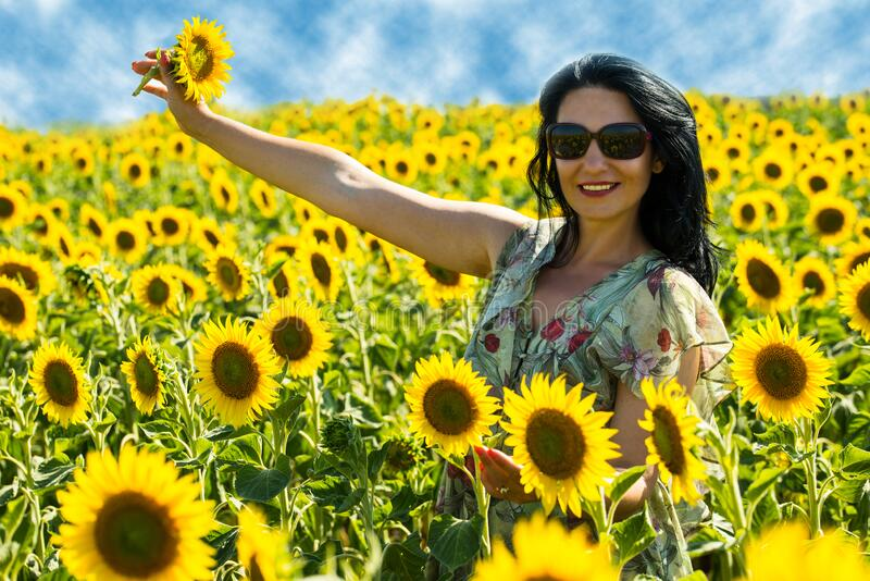 Joyful woman in sunflowers field stock image