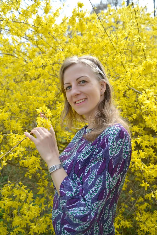 The joyful young woman against the background of the blossoming forzition. Portrait royalty free stock photos