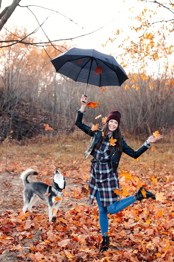 Joyful young woman throwing leaves and playing with her dog in the autumn park stock photography