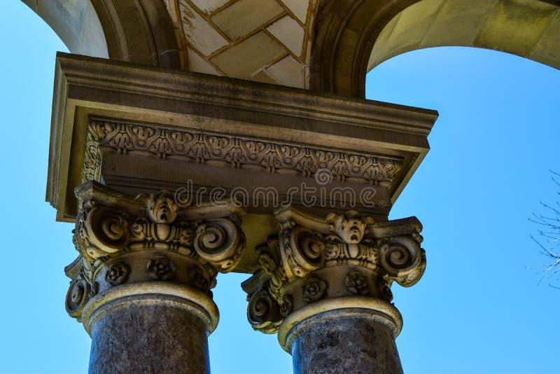 jpeg för eps för 8 ai-kolonner ionic över vektorwhite royaltyfri bild