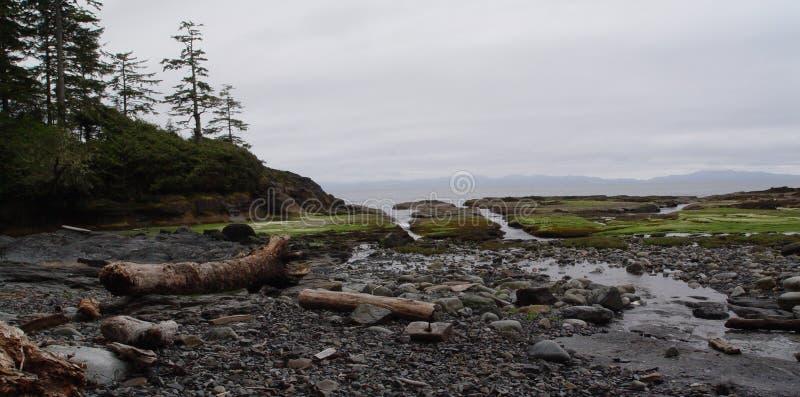 Juan De Fuca Marine Trail imagens de stock