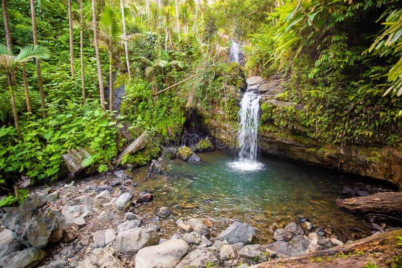 Juan Diego Falls en la selva tropical Puerto Rico del EL Yunque imagen de archivo libre de regalías