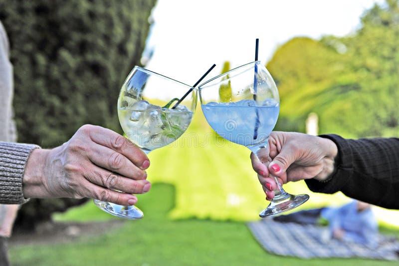 Jubel - dricka gin med ballongexponeringsglas arkivbild