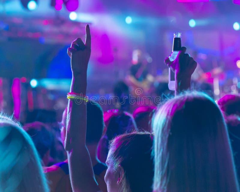 Jubelnde Menge an einem Rockkonzert stockbild