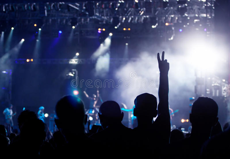 Jubelnde Menge am Konzert lizenzfreie stockbilder