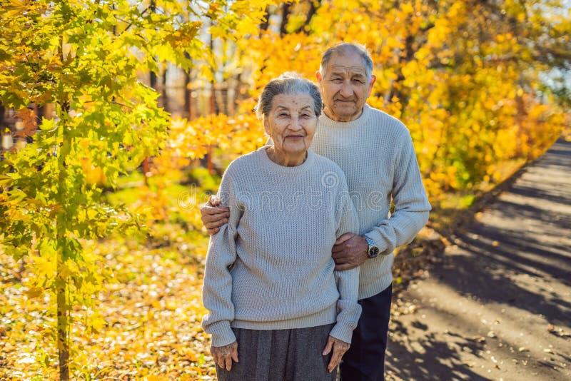 Jubilados felices en la familia del bosque del otoño, la edad, la estación y el concepto de la gente - par mayor feliz caminando  foto de archivo