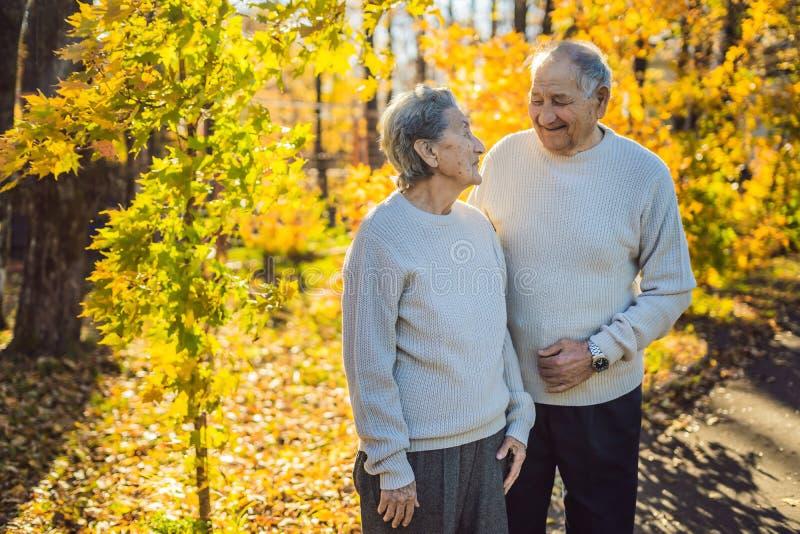Jubilados felices en la familia del bosque del oto?o, la edad, la estaci?n y el concepto de la gente - par mayor feliz caminando  foto de archivo libre de regalías