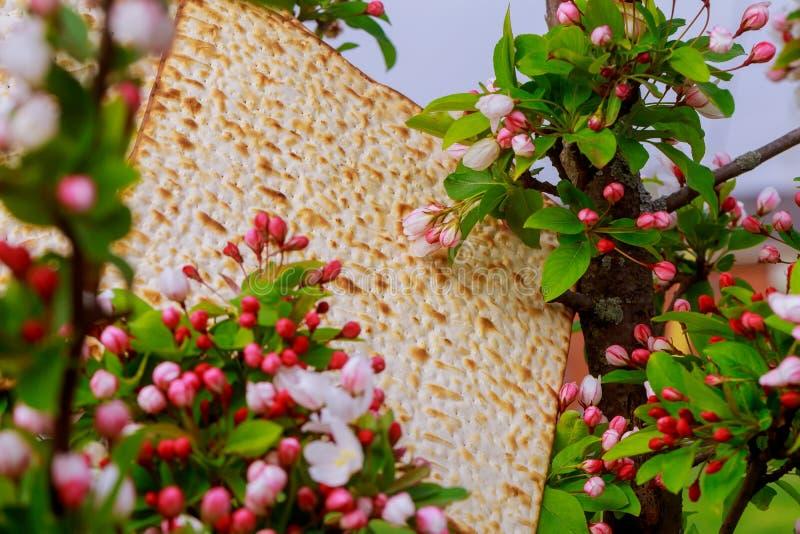 Judaïsme en godsdienstig op Joodse matza op passover tallit royalty-vrije stock afbeelding