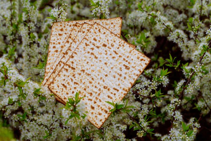 Judaism and religious on jewish matza on passover tallit. Prayer holiday unleavened bread seder celebration religion kosher matzo symbol matzah pesach hebrew royalty free stock images