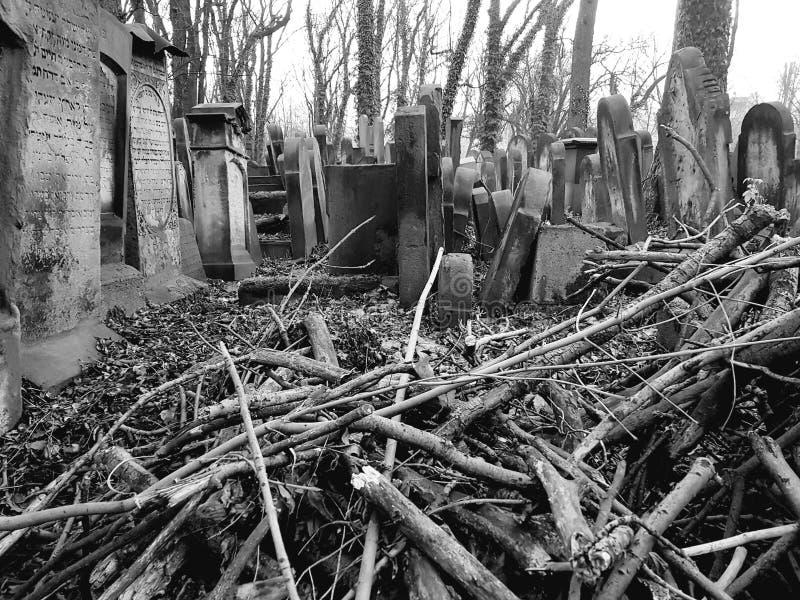 Judisk kyrkogård i Polen royaltyfria bilder