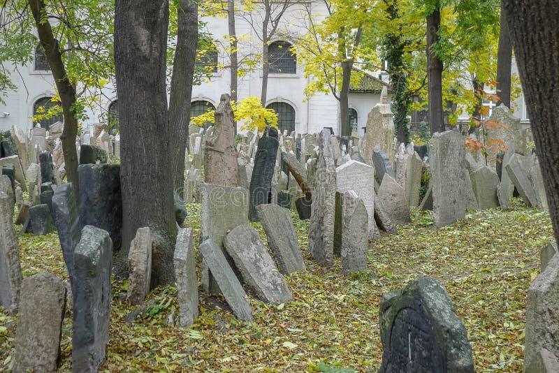 Judisk kyrkogård i Prague i Tjeckien fotografering för bildbyråer