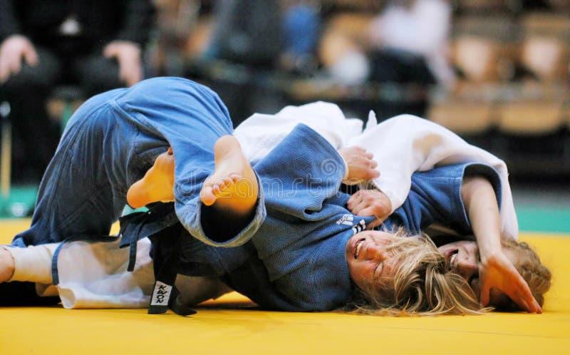 Judo stock foto