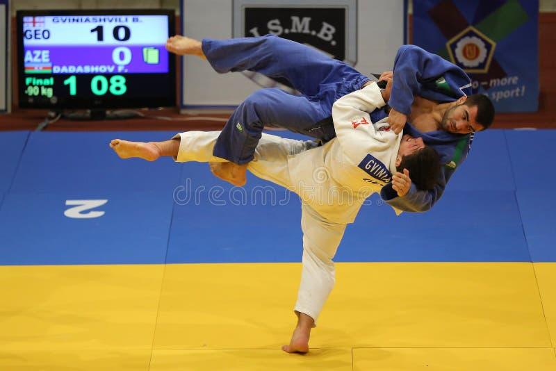 judo royalty-vrije stock afbeeldingen