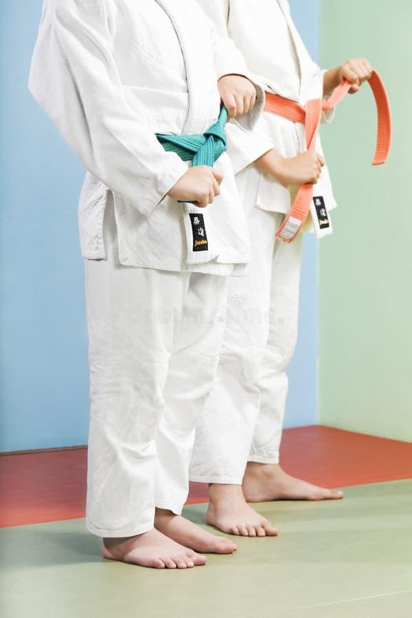 Judo Immagine Stock