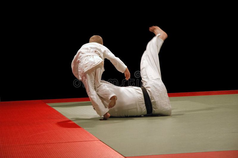 Judo Kid Wins Stock Image Image Of Instruction High Kungfu 343233