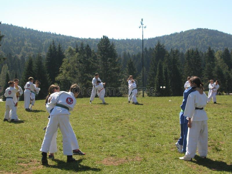 judo utomhus arkivbilder