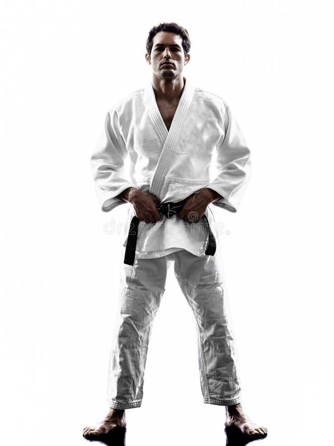 Judoka战斗机人剪影 库存照片