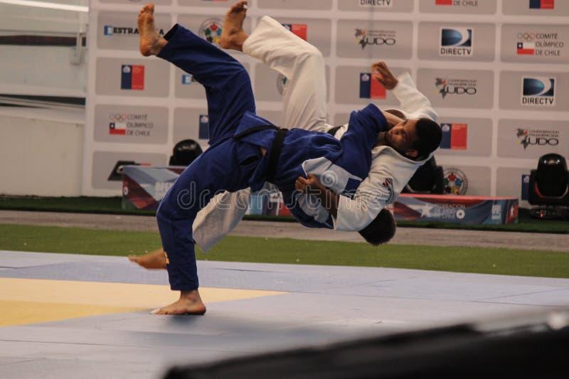 Judotechniek royalty-vrije stock afbeelding