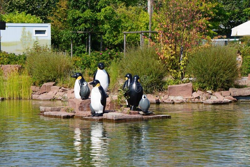 Juego de pingüinos foto de archivo libre de regalías
