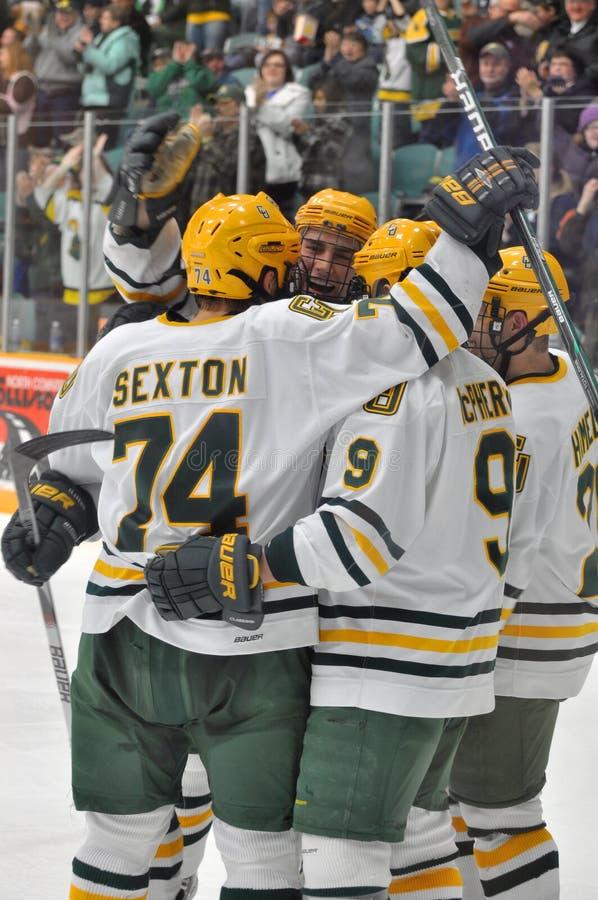Juego del hockey sobre hielo del NCAA en la universidad de Clarkson imagen de archivo