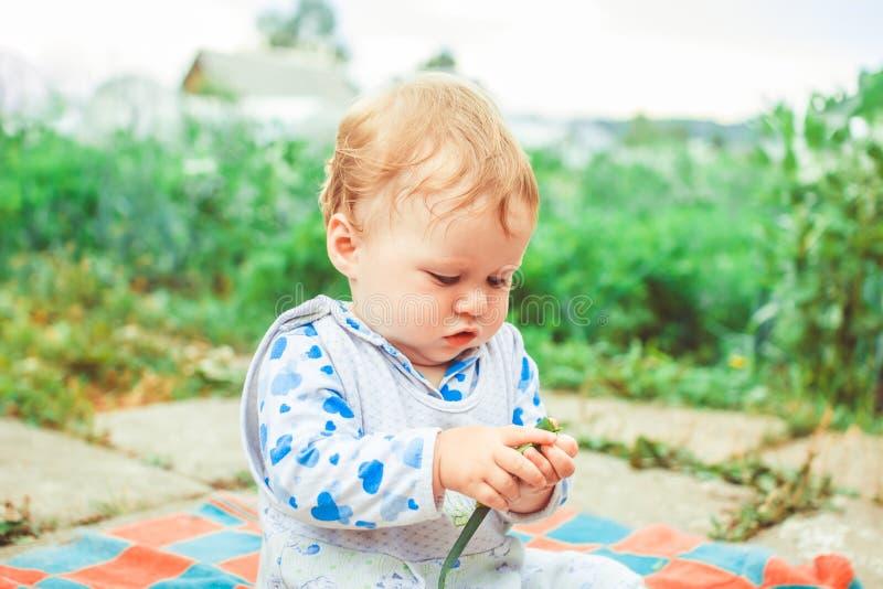 Juegos de niños en la hierba imágenes de archivo libres de regalías