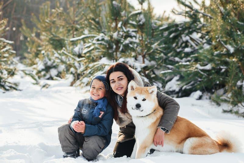 Juegos del pequeño niño y de la mamá con el perro divertido de Akita-inu en un invierno fotografía de archivo libre de regalías
