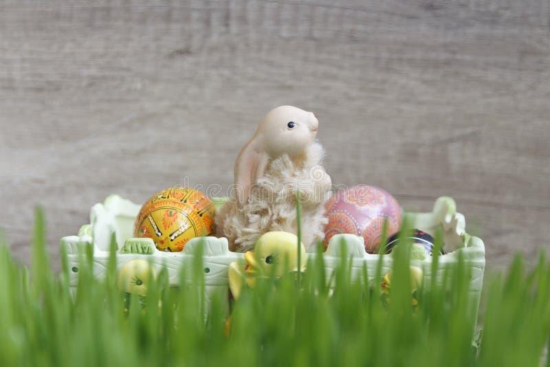 Juegue el conejito de pascua con los huevos que se sientan en cesta en hierba verde foto de archivo