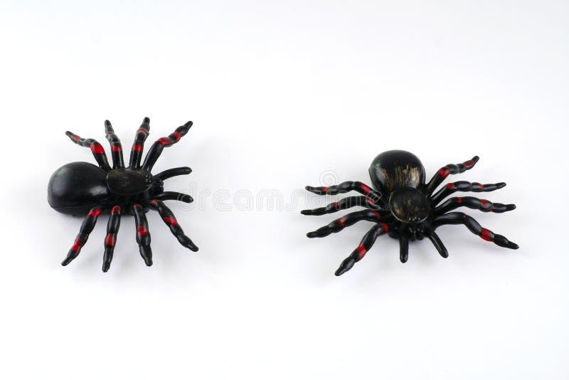Juegue la araña para la decoración de Halloween en el fondo blanco imagen de archivo libre de regalías