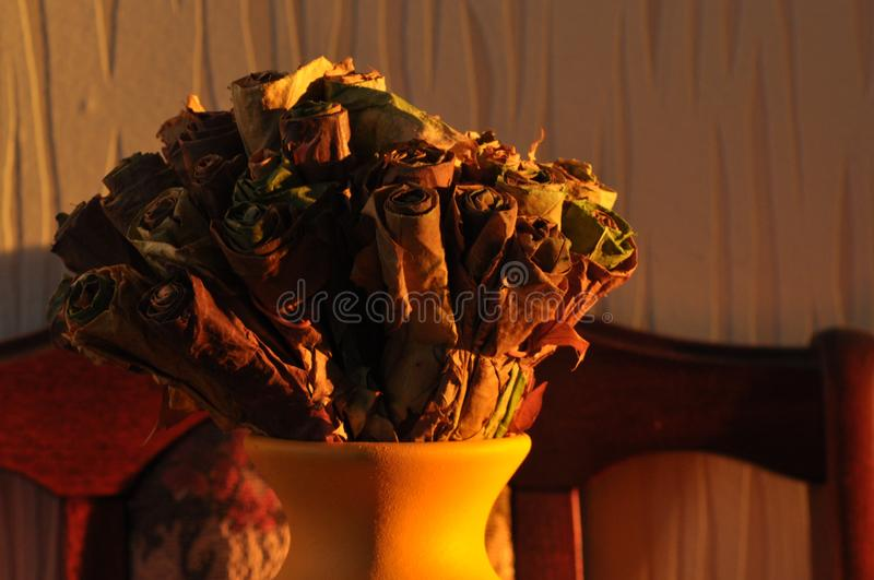 Jug with a bouquet of dried leaves resembling roses, lit the rising sun royalty free stock image
