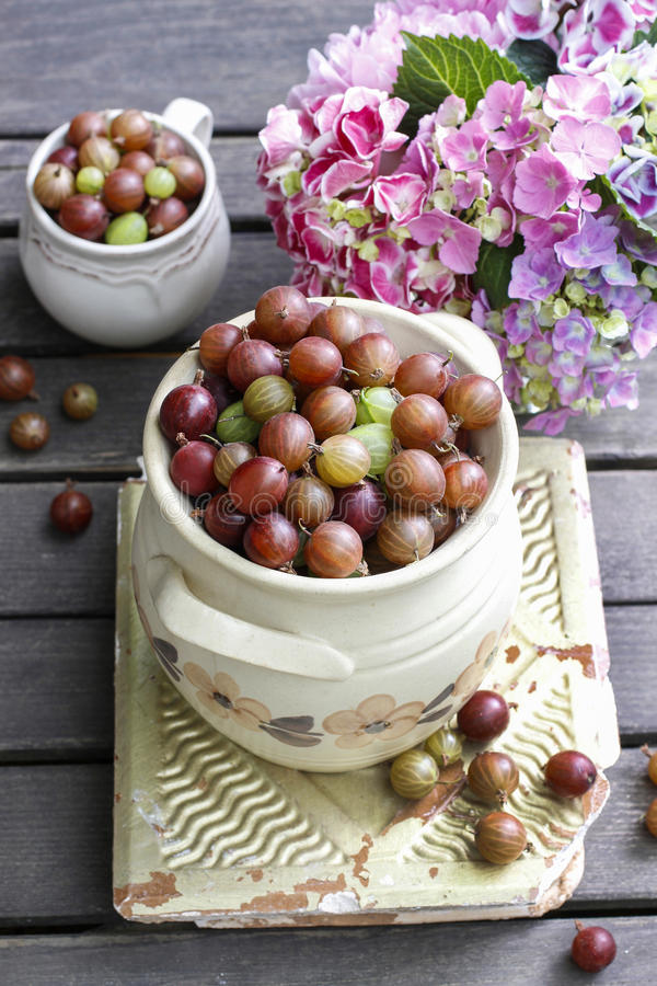Jug Of Gooseberry On Wooden Table Stock Photo
