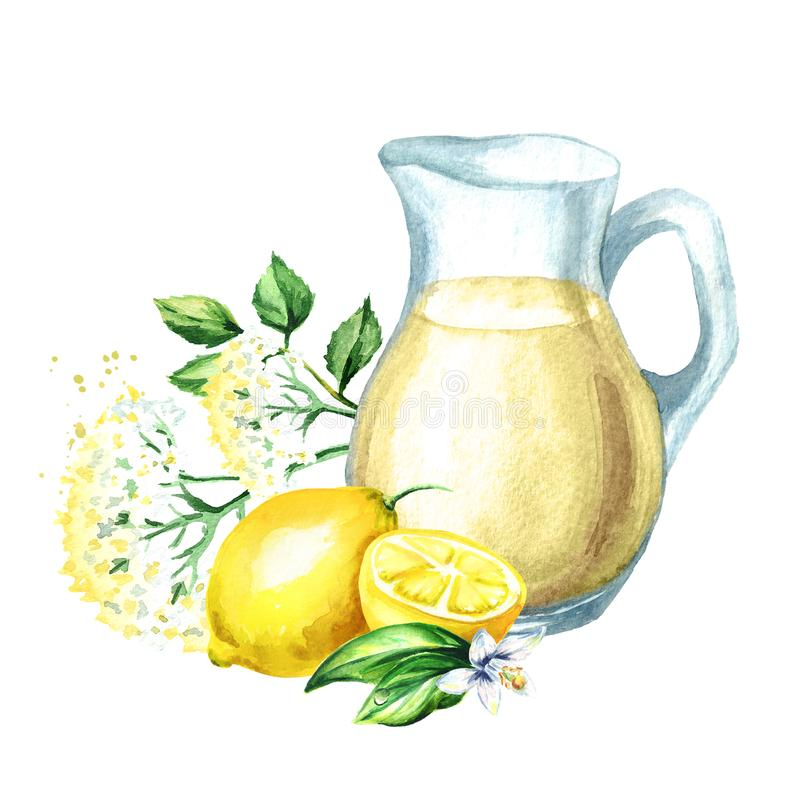 Jug with Homemade elderflower syrup, summer drink, with elder flower and lemon. Watercolor hand drawn illustration, isolated on wh. Ite background stock illustration