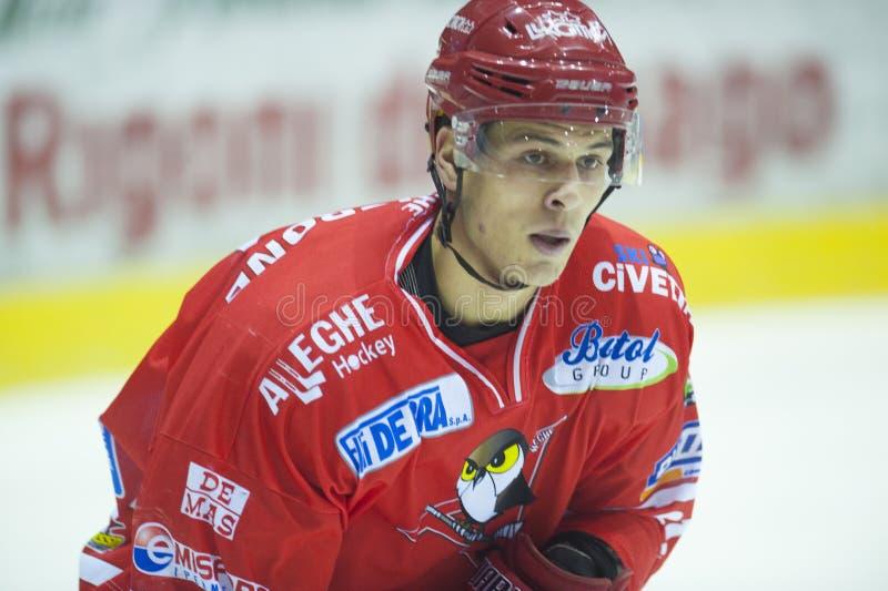 Jugador de hockey imágenes de archivo libres de regalías