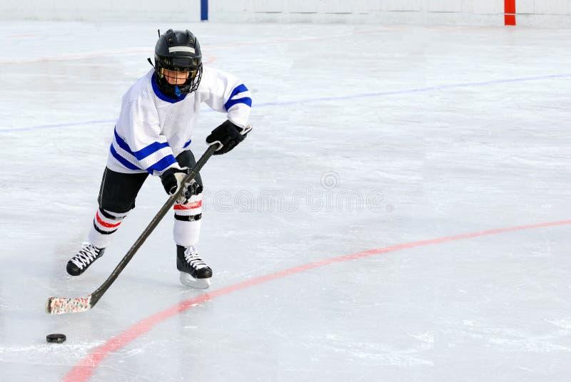 Jugador de hockey imagen de archivo