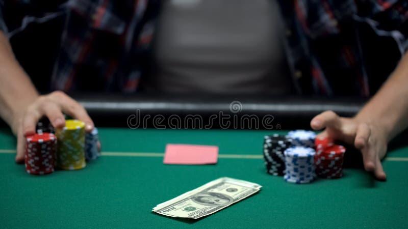 Jugador de póker que apuesta dólares y todos sus microprocesadores del casino en el juego de tarjetas, jugando fotos de archivo libres de regalías