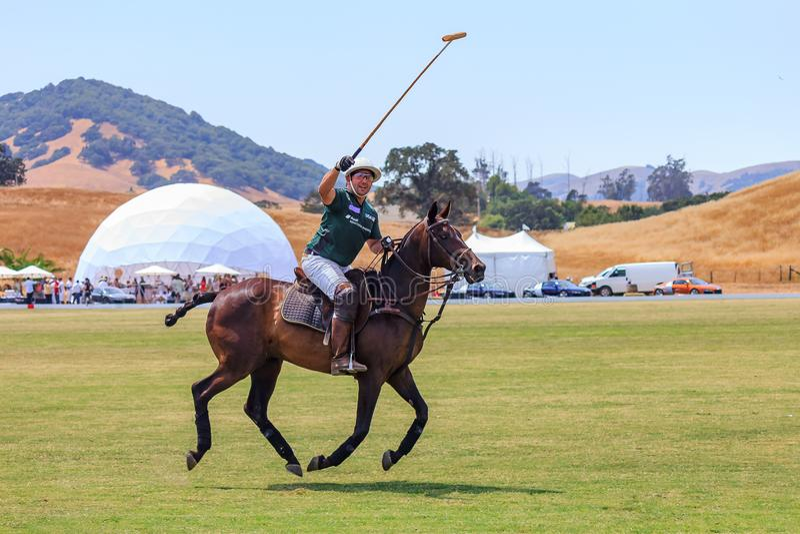 Jugador de polo que monta a caballo el saludo de espectadores con un mazo aumentado imagen de archivo libre de regalías