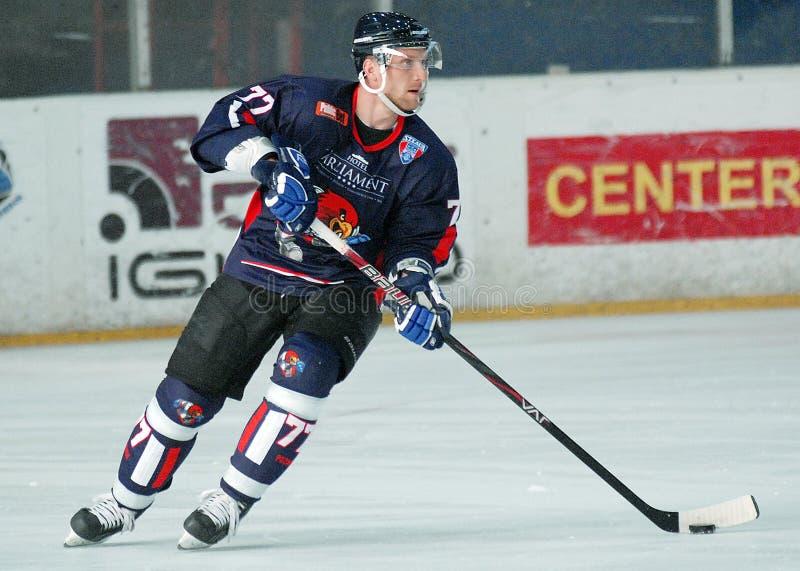 Jugador del hockey sobre hielo fotos de archivo libres de regalías